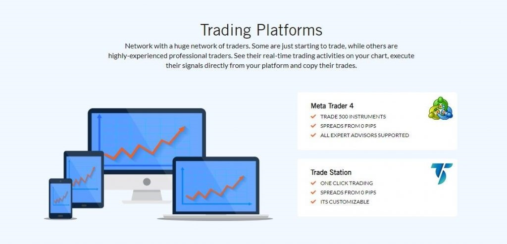 turnkeyforex review